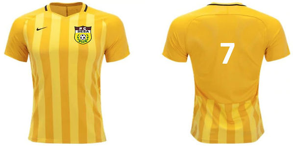 FC SESA AWAY KIT PS.jpg