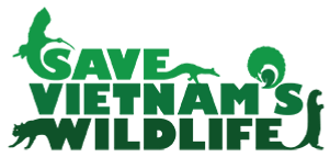 SVW-Logo-Green-on-Clear-300.png