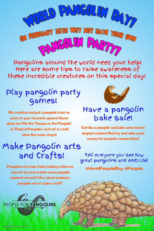 Pango Party .jpg