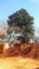 Our John Deere excavator digging a residential basement in Falls Church, VA