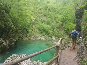 Vintgar kloof, Slovenie