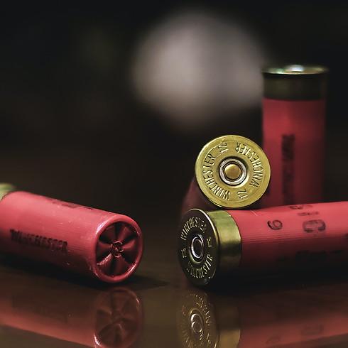 500 Cartridges