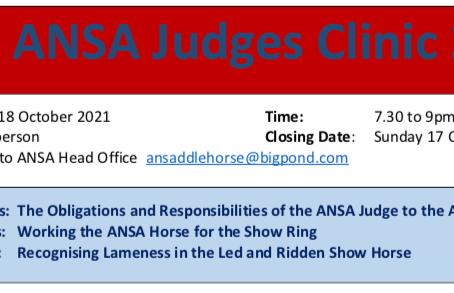 ANSA Judge's Clinic 2021