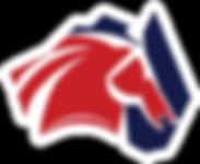 ANSA Logo COLOUR.png