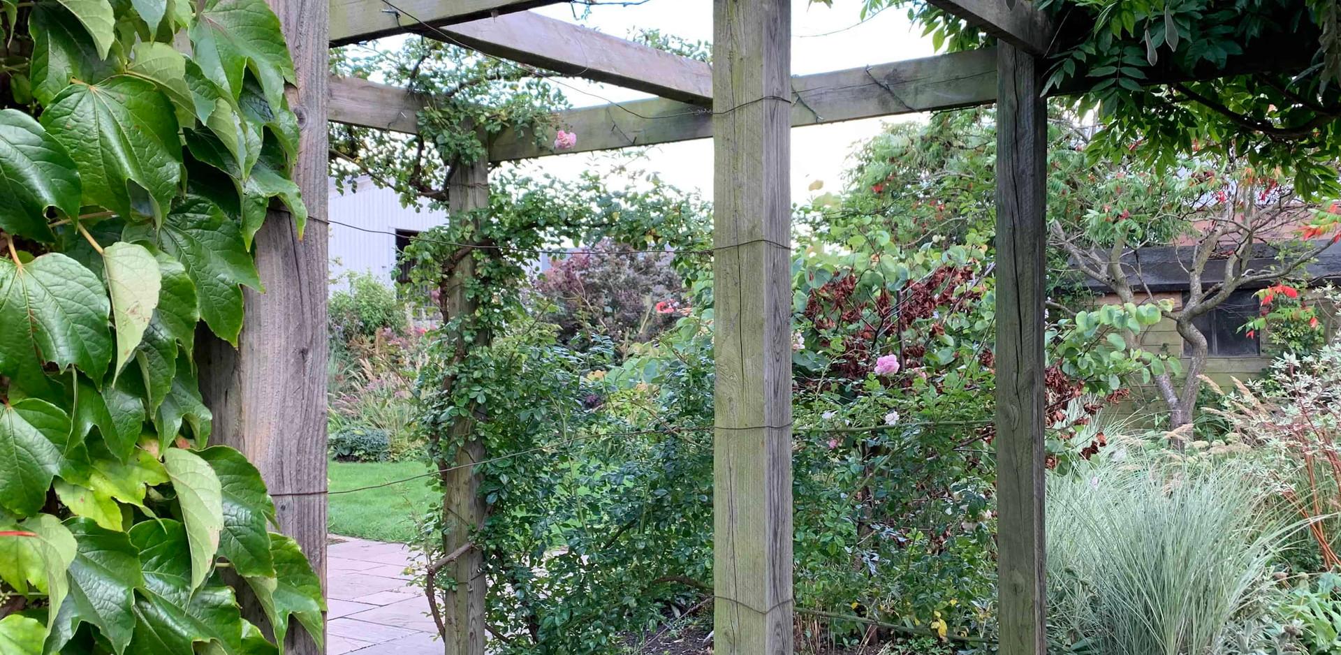 Established cottage garden planting and pergola in Aslockton
