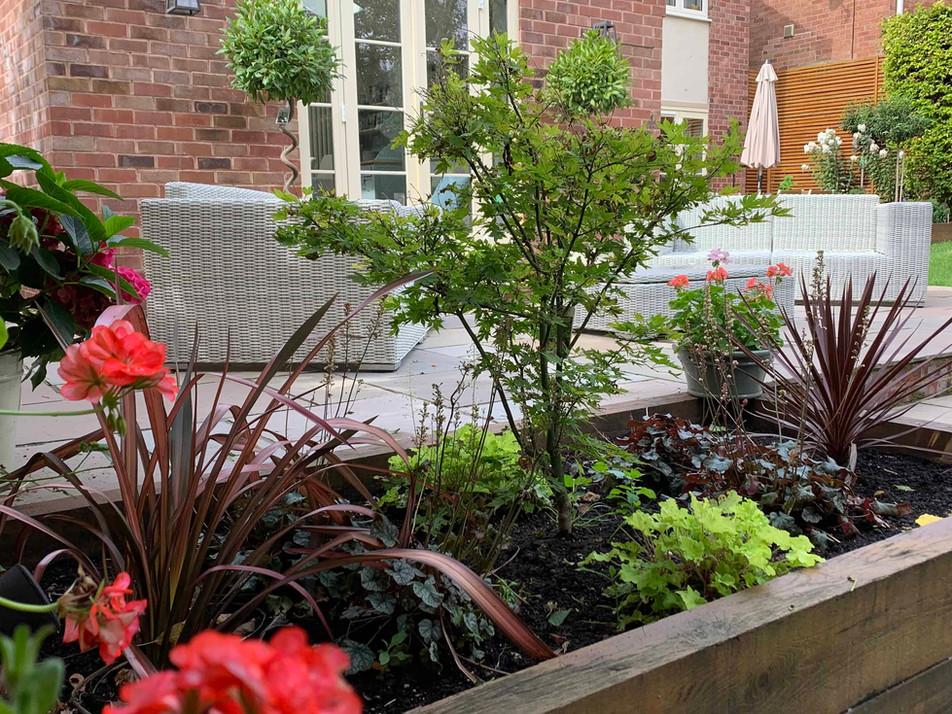 Rainforth 02 planting_1.jpg
