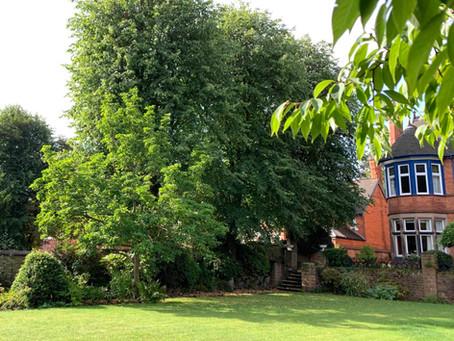 Maintaining Beautiful Gardens