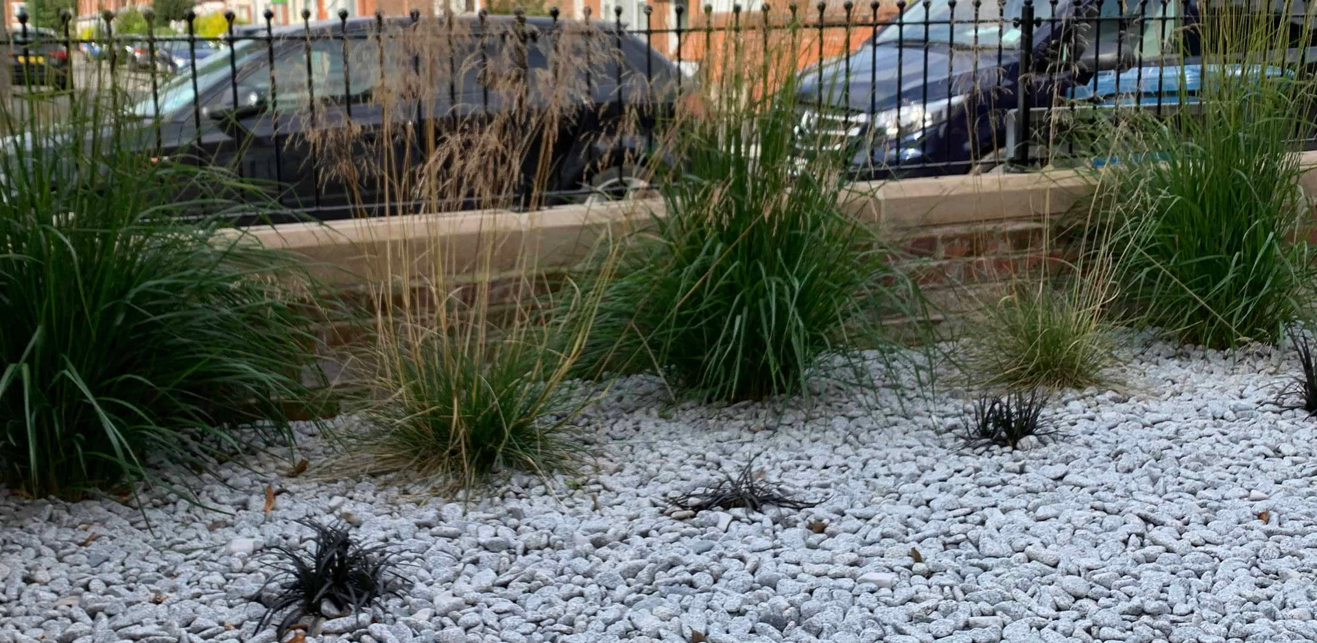 Decorative pebbles planted with grasses in West Bridgford