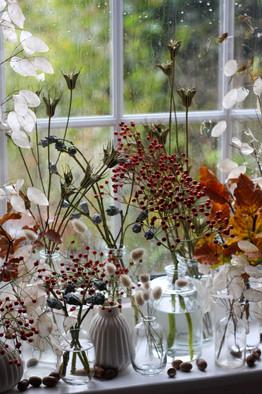 Autumn Dried Rust Flowers Sevenoaks.JPG
