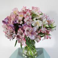 Cecily & Ernest Alstromeria Vase