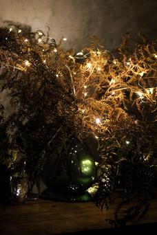 Moody Bracken Fairy Lights Florist Centr