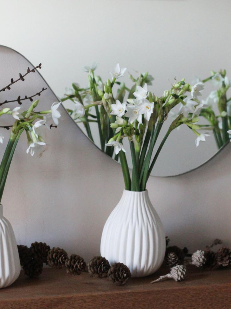 English-Narcissus-Pinecones-Vases