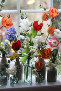 British Spring Flower Display.JPG