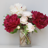Cecily & Ernest Peonies