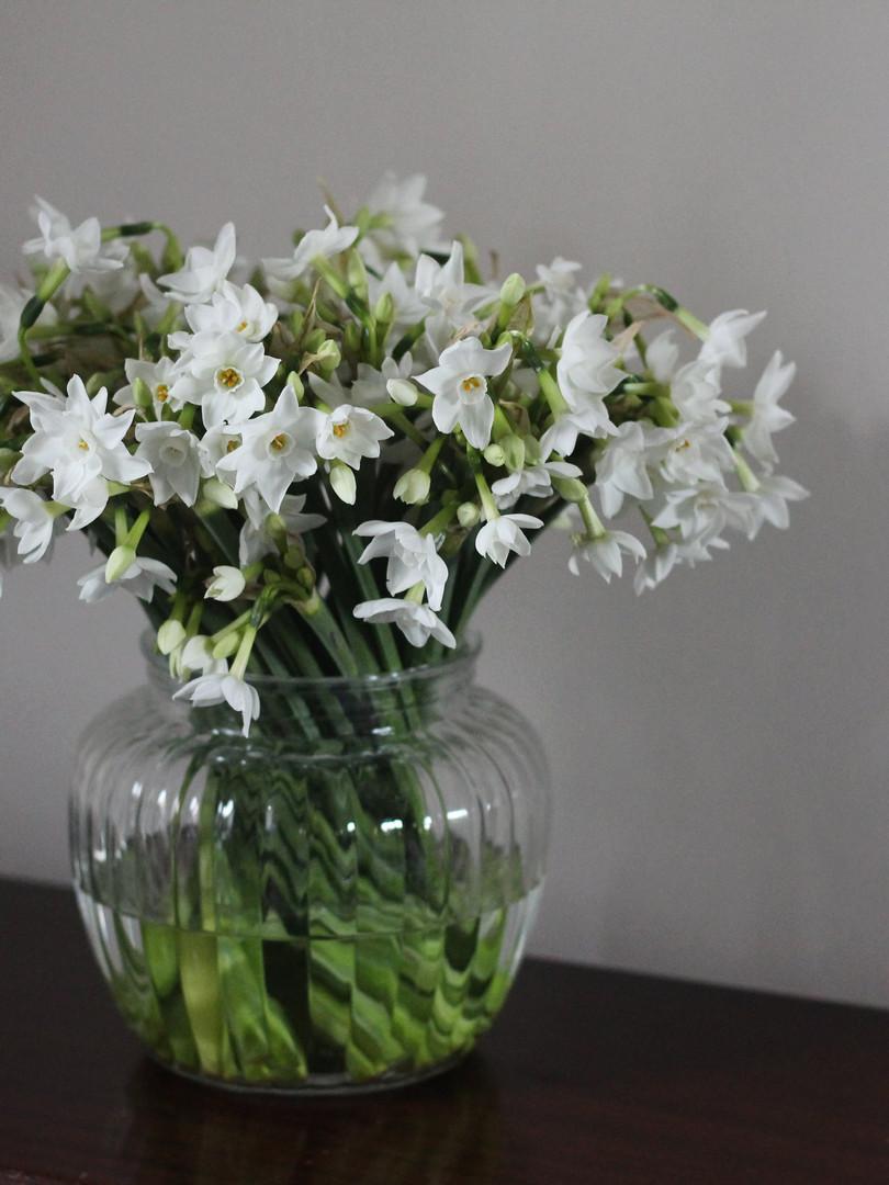 British-Narcissus-Vase