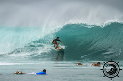 MACCAS MENTAWAI WAVE