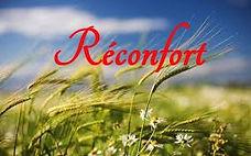 reconfort12.jpg