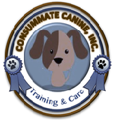 cc-logo_2.png