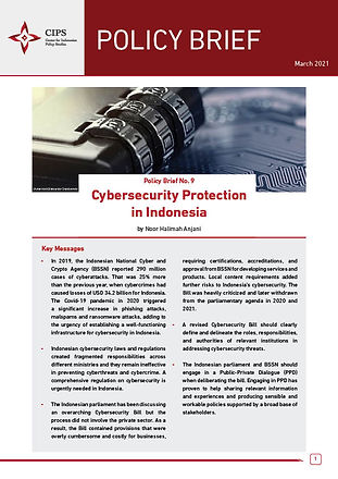 Cybersecurity Protection in Indonesia