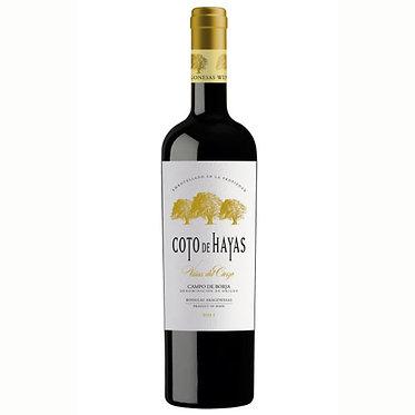 Aragonesas Coto Hayas Viña del Cierzo 2015 亞拉岡酒莊 海亞斯 北風陳年老藤紅酒