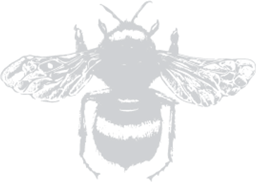 Bee_SMALL 20%.png