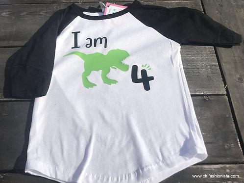 Dinosaur Birthday Raglan Tee
