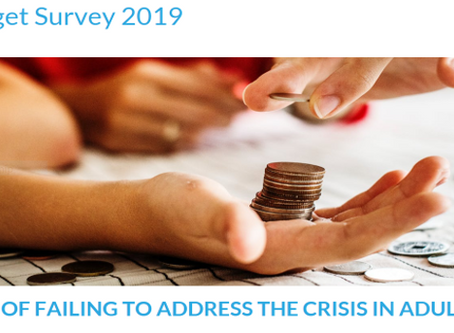ADASS Budget Survey 2019