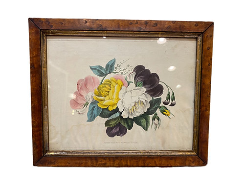 Pair of Small French Flowers with Tiger Maple Frames