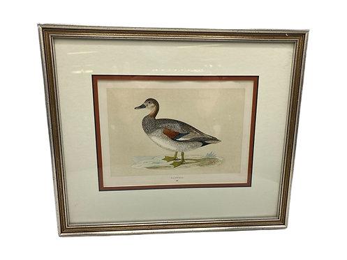 Antique Duck Print