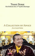 Thaye Dorje H.H. 17 Karmapa.jpg