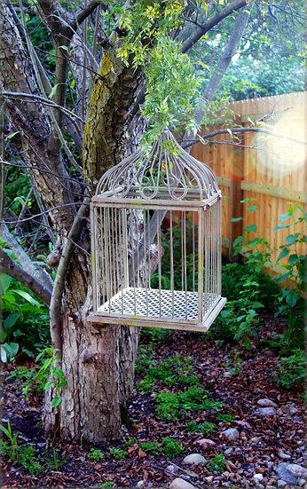Woodland Birdcage