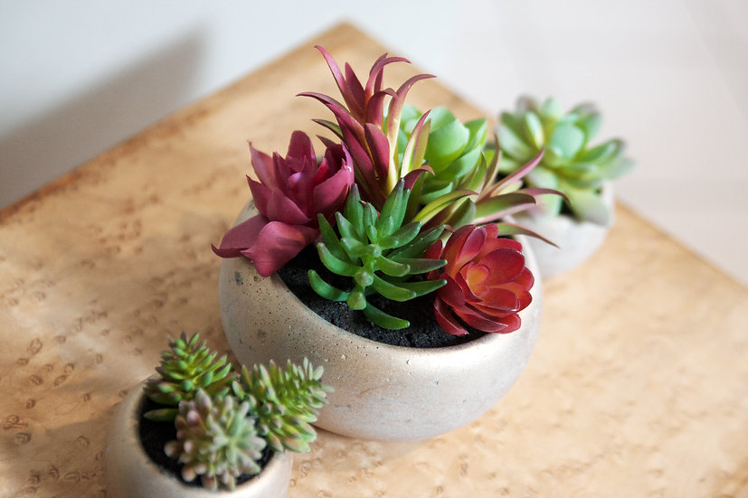 Clay Potted Faux Succulents