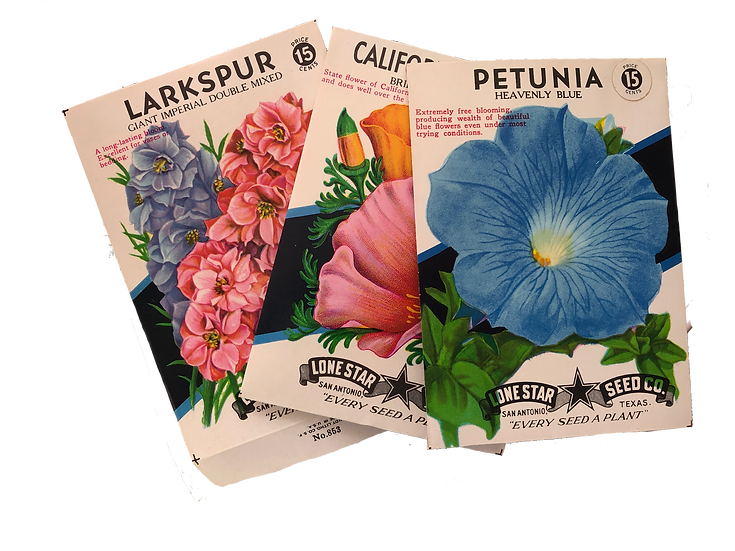 Vintage inspired seed packets