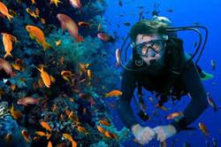 Scuba diving, Churna, Pakistan