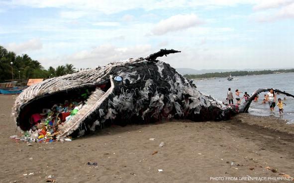 Whale died of plastic.jpg