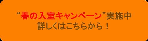 春の入室キャンペーン.png