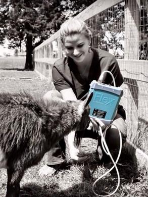 ReproScan FLEXX Veterinary Ultrasound Scanner