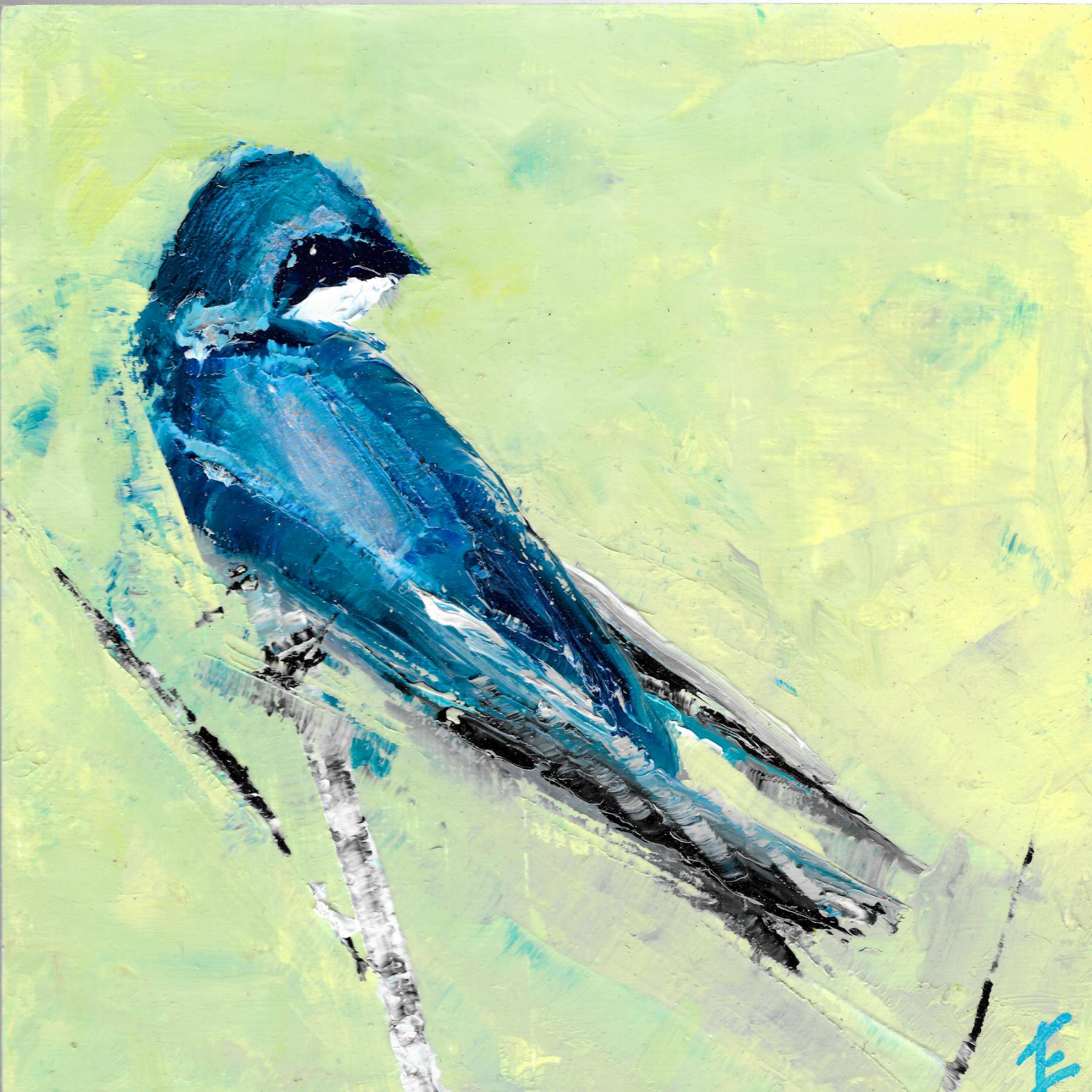 Tree Swallow 3