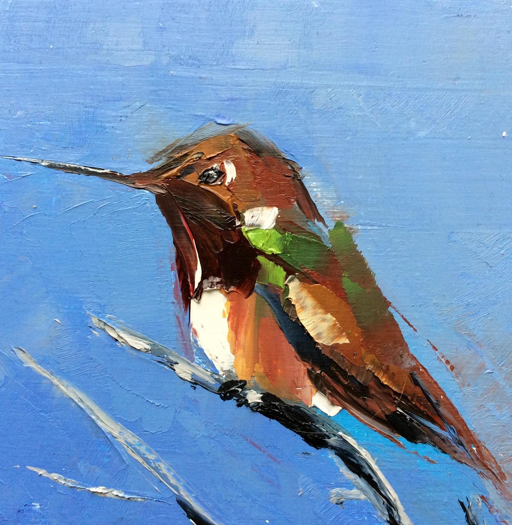 Humminbird On Blue