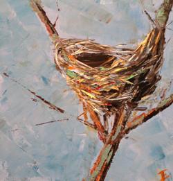 Nest #2