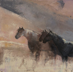 Sunlit Ride
