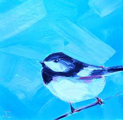 Blue Sky Chickadee