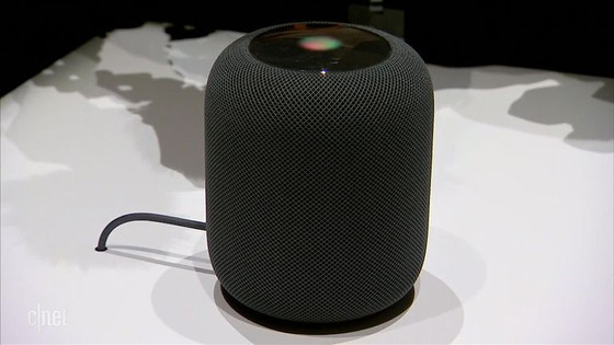 The Smart Speaker as an InsurTech