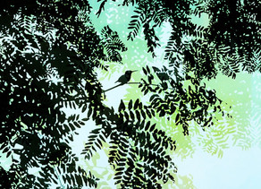 """""""In order to see birds it is necessary to become a part of the silence"""" by Lisa Deupree"""