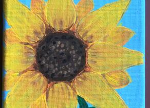 Sunflower by Phoebe Zimmerman