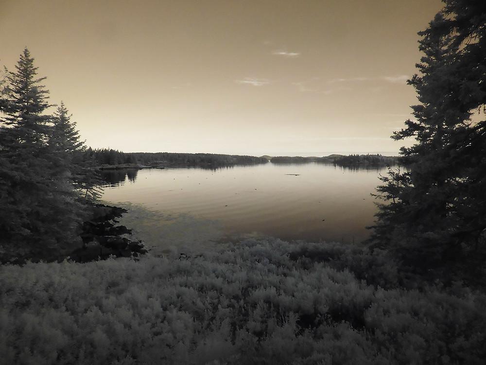 Sepia image of bay at sunset