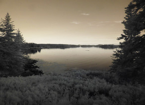 Maine Dusk by Nancy Roberts