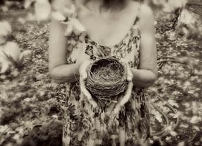 Empty Nest Dream by Nancy Roberts