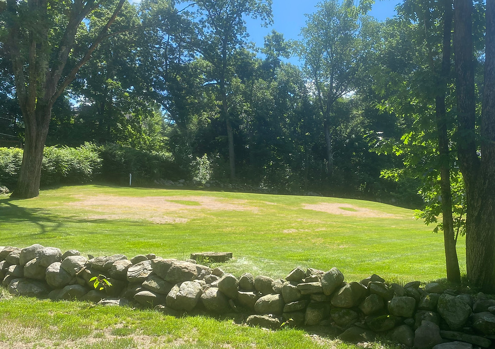 Dry grass creates two round brown patches in a lawn