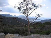 Amorgos Wandern in der Gruppe
